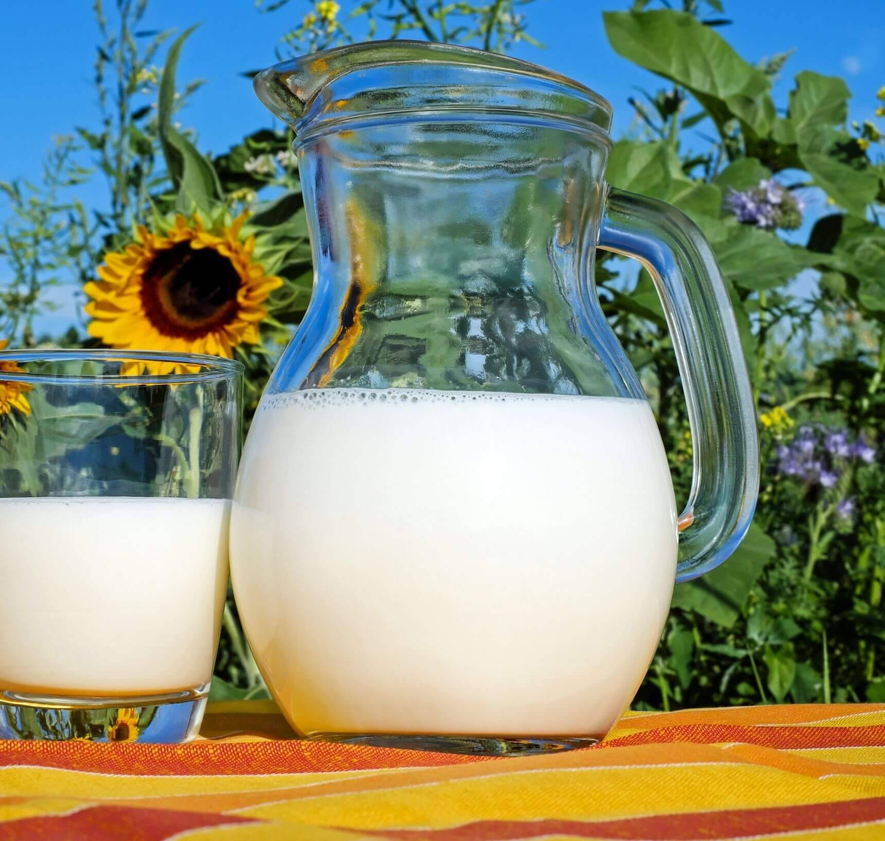 rauwe melk gezond